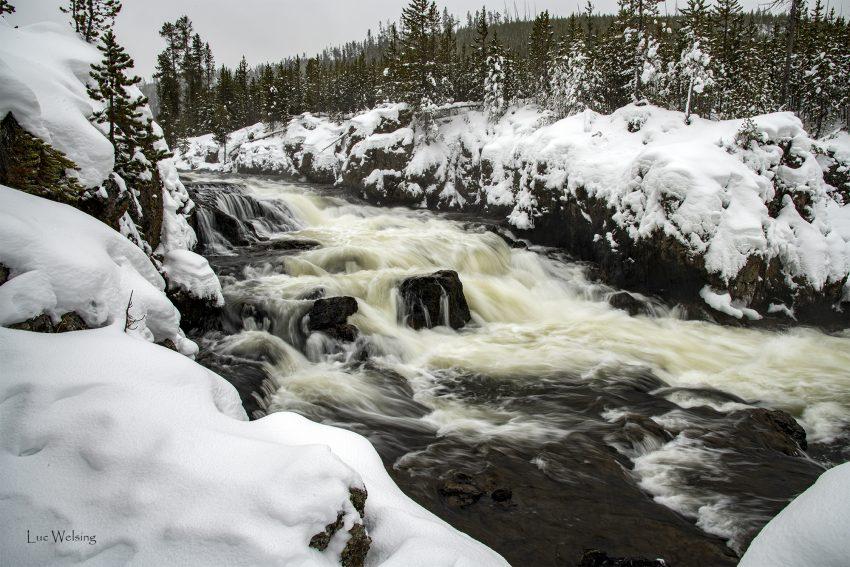 Yellowstone, janvier 2020