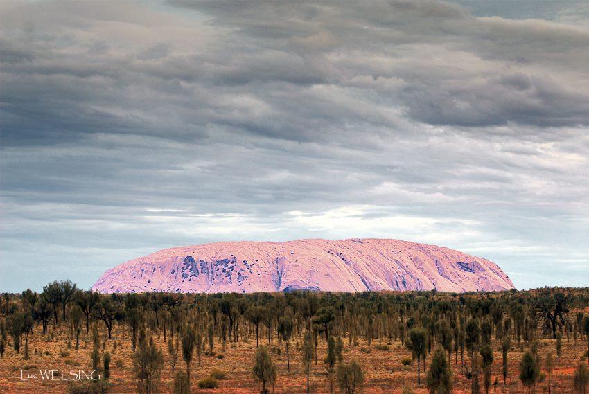 Uluru au petit jour, montagne sacrée des aborigènes, Australie,  2007