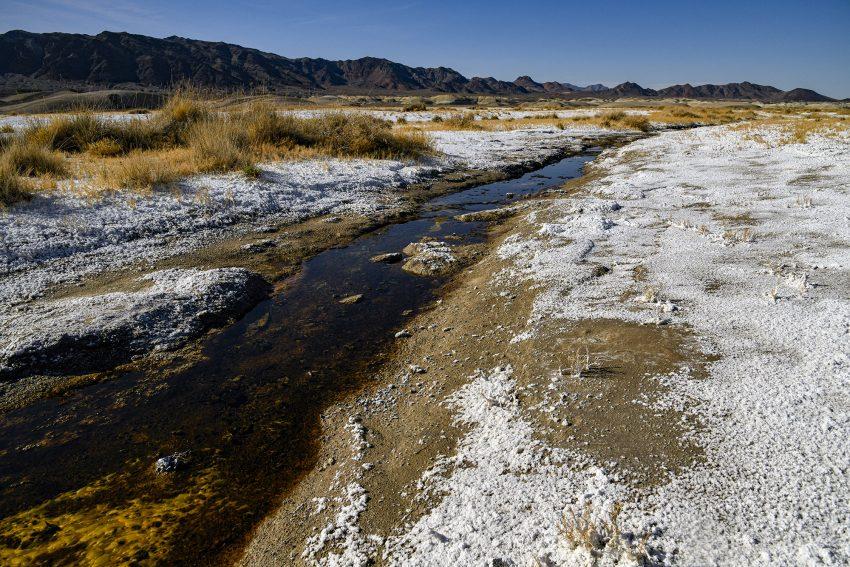 """Bore le long d'une maigre rivière à quelques encablures de Hrmony Borax Works,  35° 55' 35"""" N 116° 16' 5"""" W californie , mars 2020"""