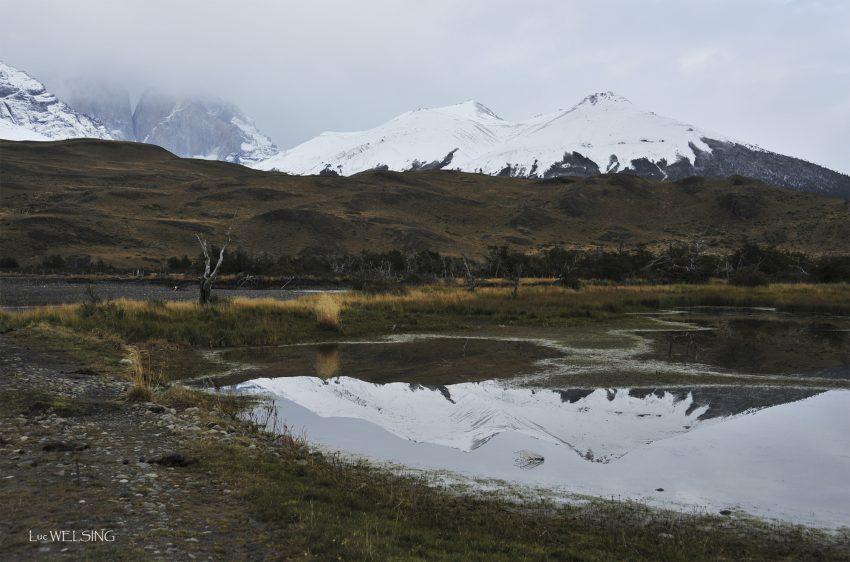 Reflet parfait, c'est rare. chili 2011