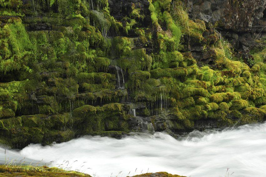 Holaskjol, petite rivière perdue dans les montagnes, inaccessible en auto. Islande 2012