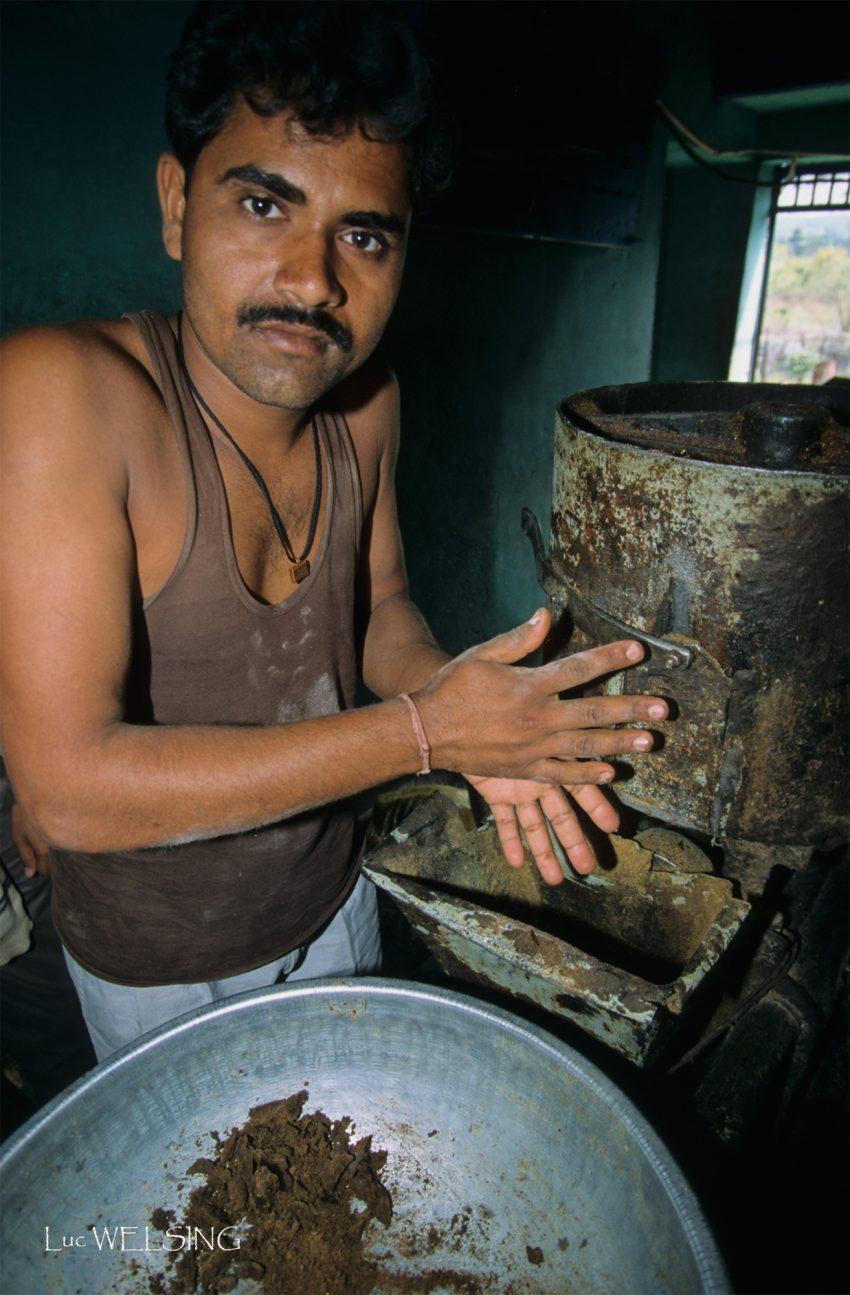 Meunier, Madyar Pradesh, Inde, 2002