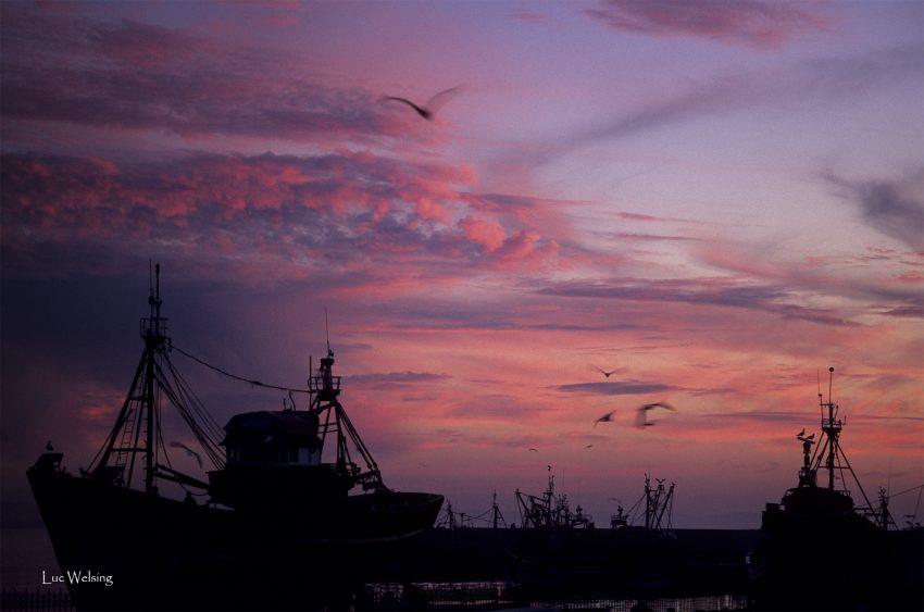 Essaouira, le port, 2006